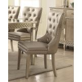 Acme Furniture Kacela Side Chair in Champagne (Set of 2) 72157