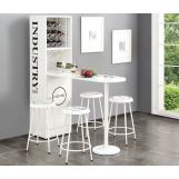 Acme Furniture Mant 5pc Counter Height Set in White